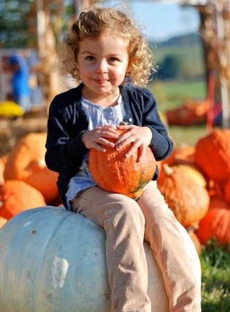 DC with pumpkins