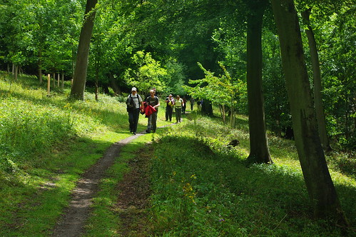 20110717-33_Midland Hill Walkers - Hailey Wood - Chilterns by gary.hadden