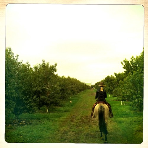 Horseback tasting tour with Cherry Wood Barn