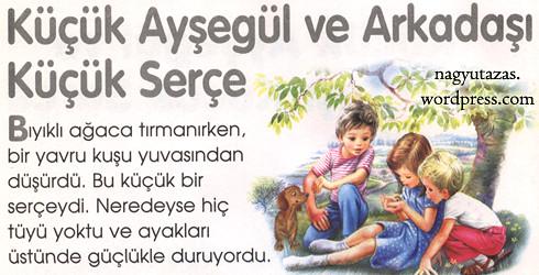 Ayşegül és kis barátja