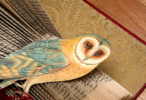Altered Books Barn Owl-3