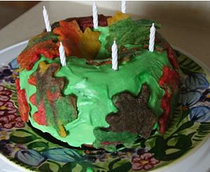 lilboog-2011-cake