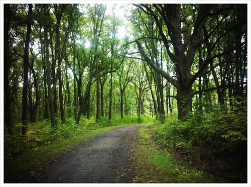 Sag Valley Trail