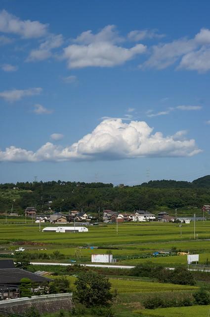 110923_kakogawa01