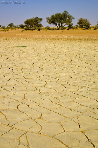 Drought but not forever by TARIQ-M