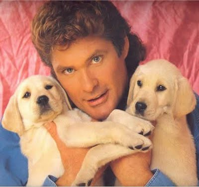 david-hasselhoff-britains-got-talent