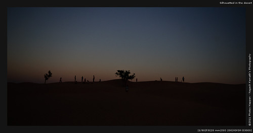 Silhouetted in the desert