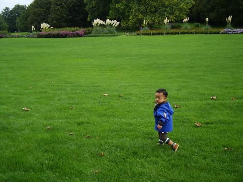 在草原上奔跑的我