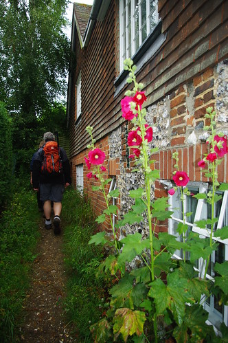 20110717-22_Hollyhocks and Narrow Path - Turville by gary.hadden
