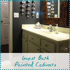 guest Bath painted cabinets