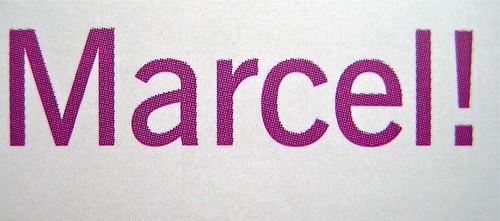 Mario Lavagetto, Quel Marcel!; Einaudi 2011. [resp. grafica non indicate], alla cop.: Claude Monet, Ninfee, 1916-19/Musée Marmottan Monet/Foto Lessing-Contrasto. Copertina (part.), 12