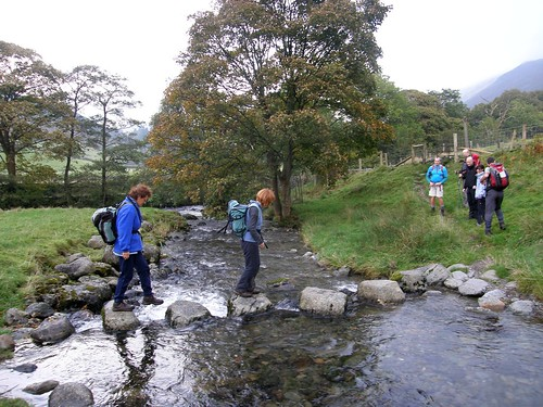 Stepping stones - tongue gill