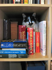 Reference cat