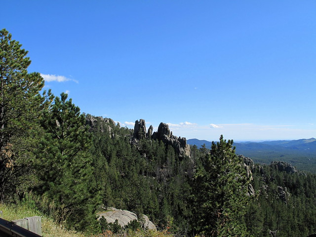 Black Hills from Needles