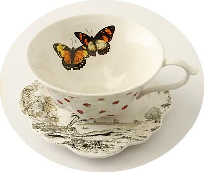teapcup2