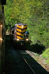 Great Smoky Mountains Railroad-65