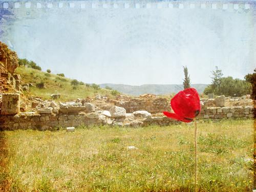TT-red-201005030002_Efes-after-web-versionA