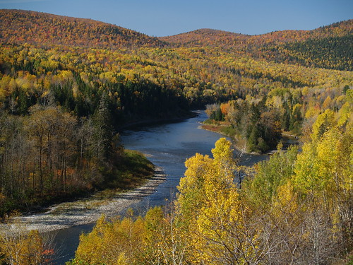 Matapedia River Fall