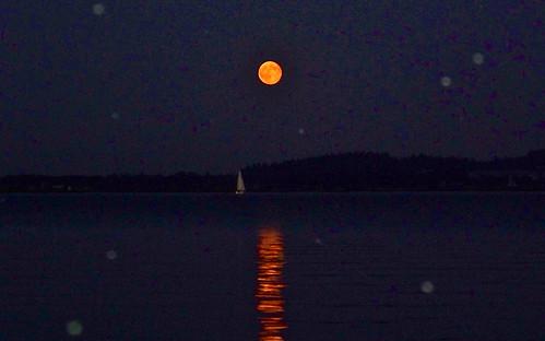 Looking - Sail Boat Full Moon by WETCLOUD