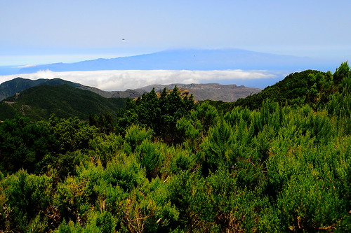 Chapter 4 - The green side of La Gomera (#5): ...and below us a sea of ​​clouds