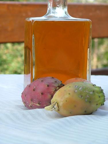 Fichi d'india -  Prickly pear (Opuntia Ficus-Indica)