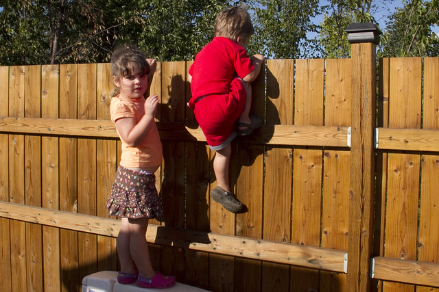 Fence Climbing 2