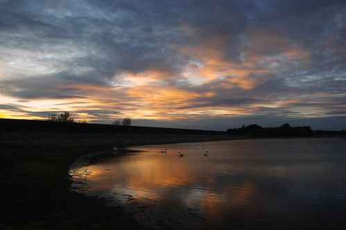20110819-16_Sunset reflections + Swans_Rainbow Corner_Draycote Water by gary.hadden