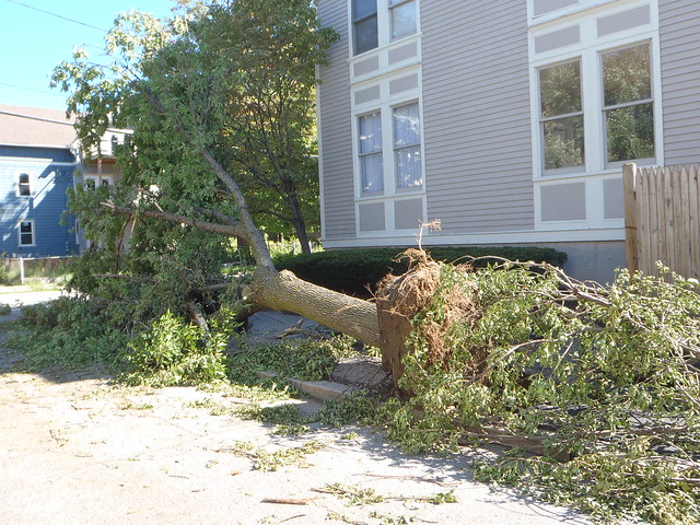 Hurricane Irene's havoc on Harkness Street, Providence, RI
