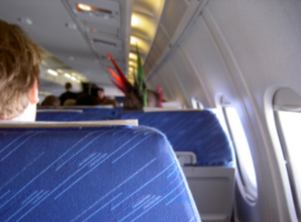 punk on a plane