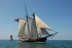 Tall Ships Parade in San Diego Bay for Festiva...