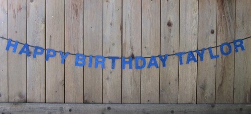 Happy Birthday Taylor Banner