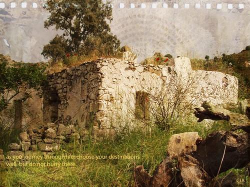 201105010109_Sandima-autumnburst- copy