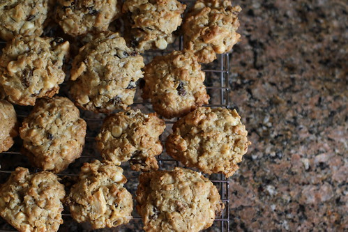 white chocolate, walnut, raisin, coconut, and oat cookies