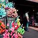 Amsterdam - Flowers