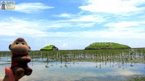 Destination: Magasang and Mapasad Rocks (3 storey high)