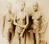 Three by Tekapa