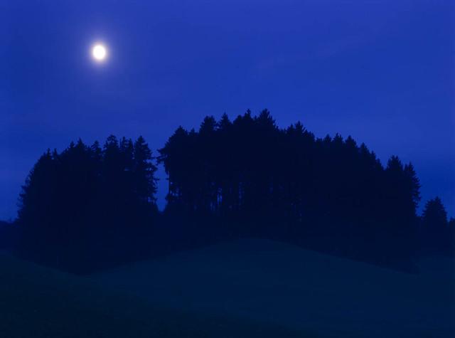 Bavarian moonnight