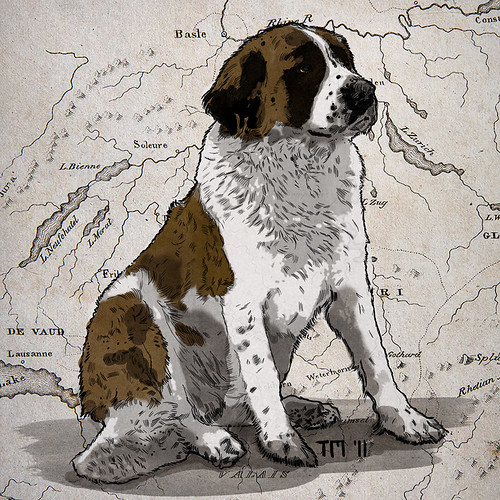Illustration of a Swiss St. Bernard Dog