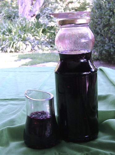 Pontac sauce - Salsa Pontac