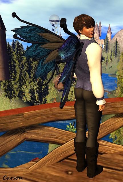 Dark Water Designs - Unseelie Suit Wings