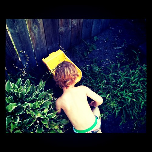 Sand box not required. Naked landscaping - all the rage at 3 years old.