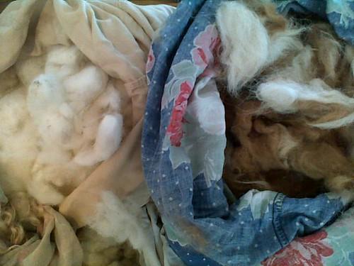 fleece inventory 005