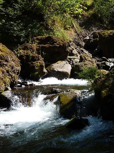 a tanner creek