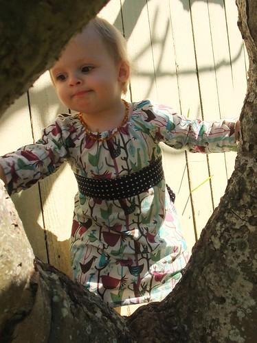 Charlotte Dress 7