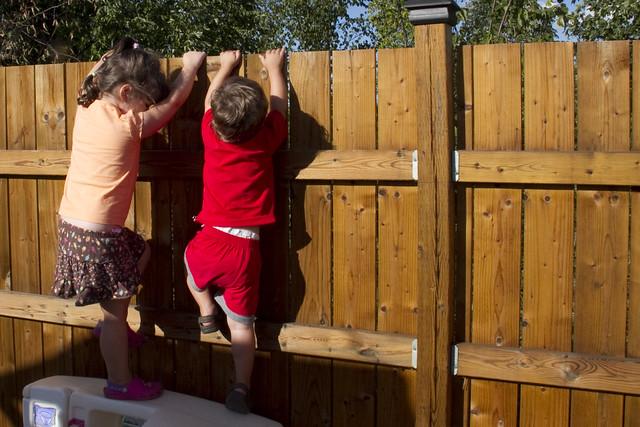 Fence Climbing 1