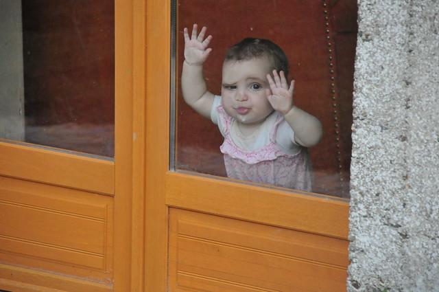 z discovers a window