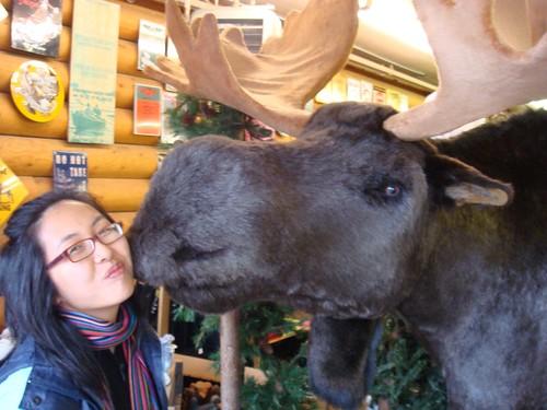 Moose kiss!
