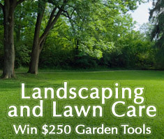 Landscaping and Lawn Care Photo Contest
