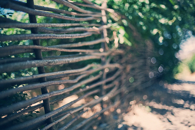 twigs fence
