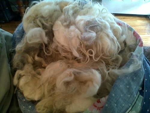fleece inventory 009